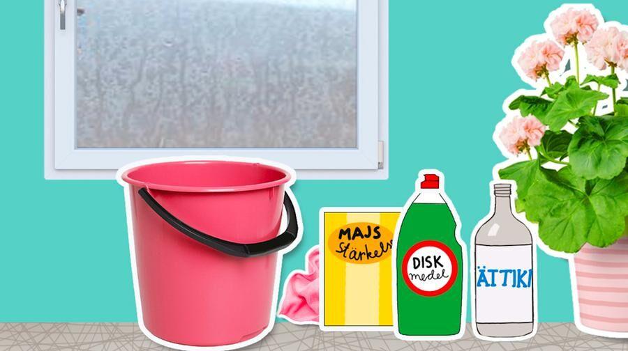 Husmorstips. Blanda din egen fönsterputs.