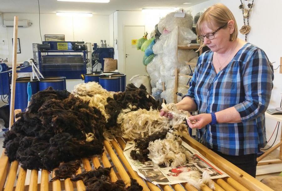 Först vägs och sorteras ullen för hand. Just den här ullen vill fårägaren sticka sockor av, berättar Kerstin Karlén.