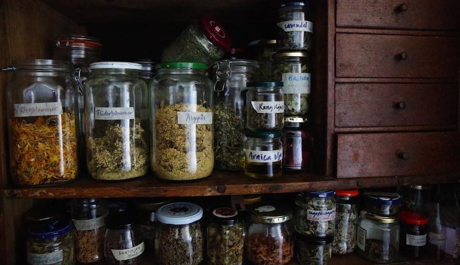 I Ann-Louises förråd står rader av burkar, med naturens läkekrafter.