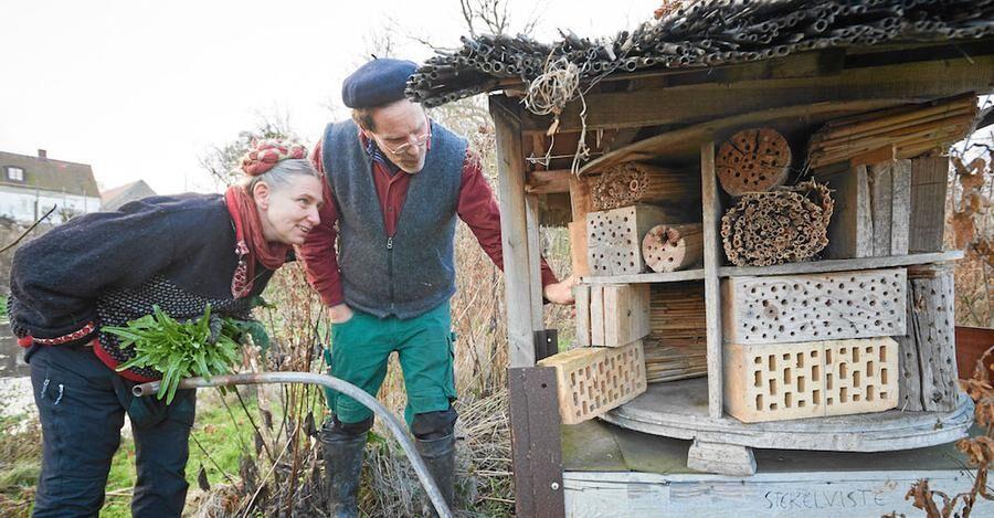 Marie och Gustav kollar om det flyttat in några bin eller steklar i insektshotellet.