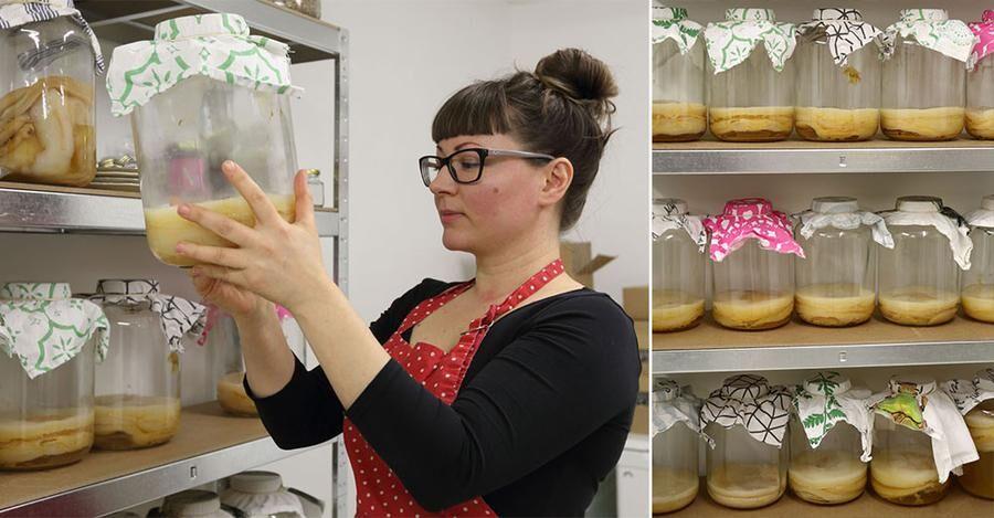 Camilla vårdar sina bakterier ömt och förädlar dem till nyttiga läskdrycker. Foto: Peter Ekeström