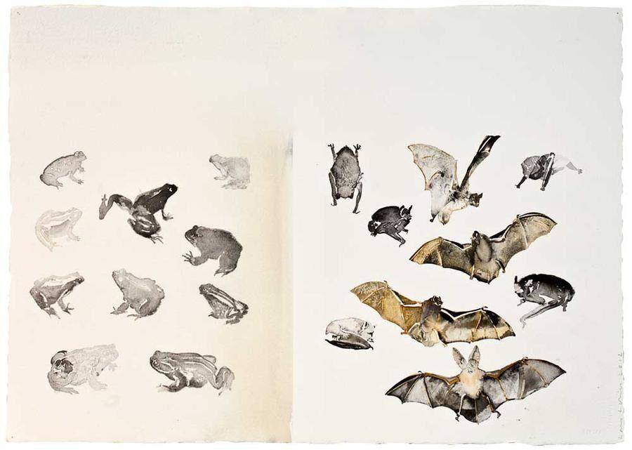 Konstnären Lars Lerin har koll på djurarterna.