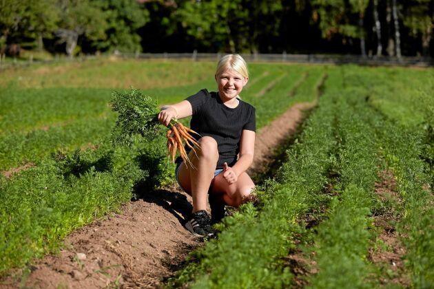 11-åriga Alva gillar att kunna gå ut i landet och plocka krispiga morötter. Skörden säljs via Rekoringar framför allt.