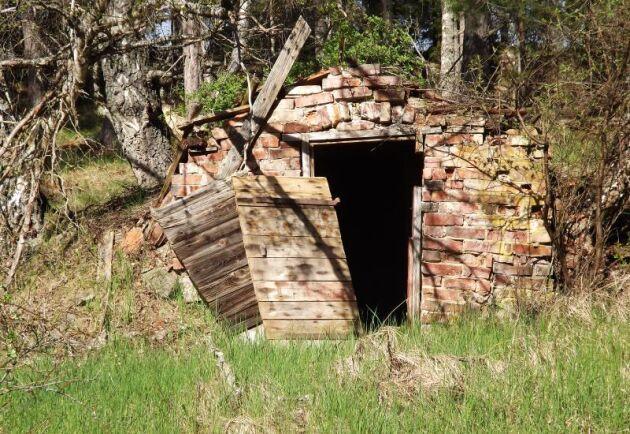 Jordkällare med exempelvis gamla ruttna trätak kan vara en fara för hästar på bete. Arkivbild.
