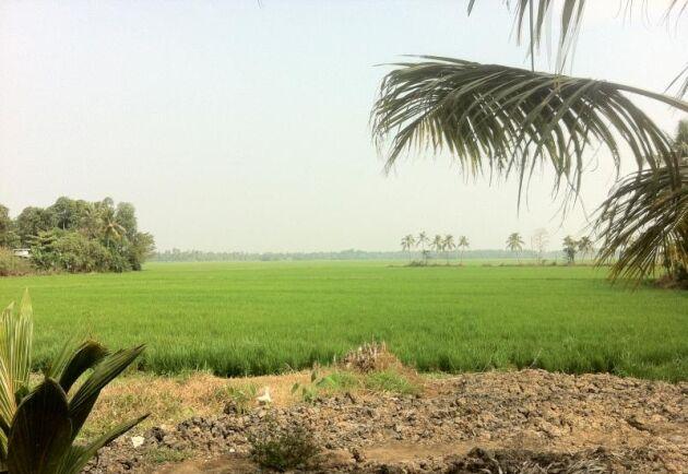 Runt 30 000 indiska bönder kräver nu att få överta statlig mark och få bättre betald för sina produkter.