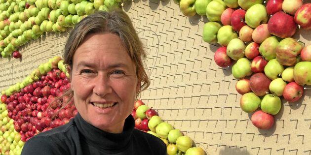 Emma gör tavla av 3 ton äpplen