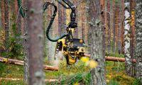 Sveaskog höjer timmerpriset i norr