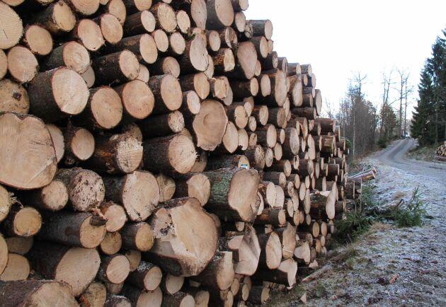 Virkesbörsen är en digital handelsplats där skogsägare själva tar in anbud och kan jämföra priser från flera köpare.