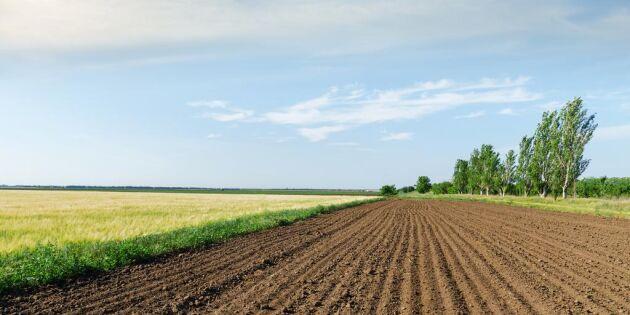 Nej till Örebro kommun - får inte bebygga åkermark