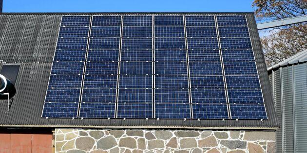 Stödnivån till solceller har minskat – men inte intresset