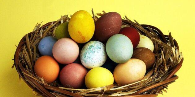 Måla äggen giftfritt med färg från skafferiet