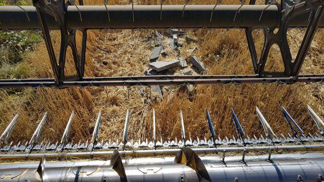 Många upplever att det blir vanligare att till exempel byggmaterial dumpas där det inte hör hemma. Här en bild från en lantbrukare som i samband med tröskning upptäckte marksten som dumpats i fältkanten.