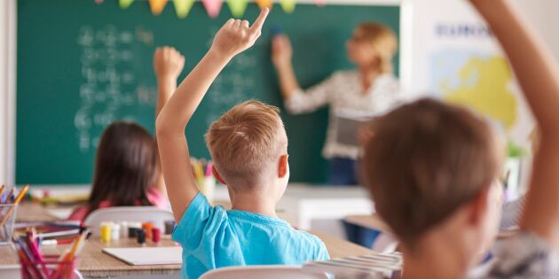 Kartläggning visar: Få behöriga lärare på landet