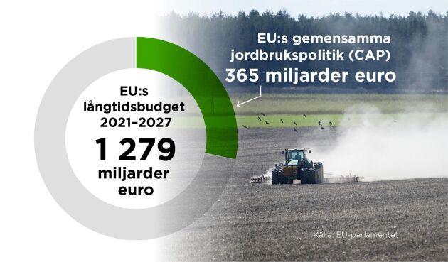 Den långsiktiga finansieringen av jordbrukspolitiken bestäms i EU:s långtidsbudget. Foto: Ingela Landström/TT