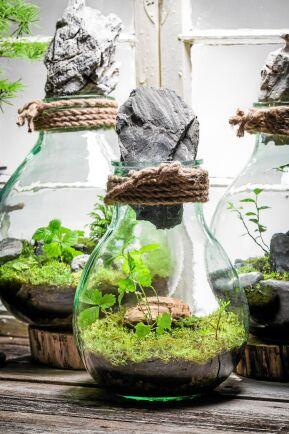 """Trädgårdsfynden har satts i flaska. Mossa ur gräsmattan, fina stenar, små smultronplantor och stora stenar som """"burklock"""". Foto: Istock."""