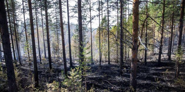 Skogsägarna övertar ansvaret i Ljusdal