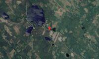 Ny ägare till skogsfastigheter i Västerbotten