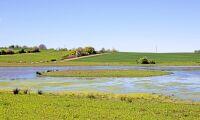 Kunskap om våtmark ska öka