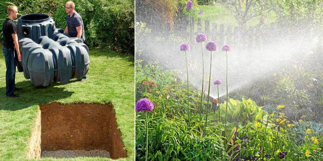 Smart avlopp: Använd regnvatten till tvätt, toalett och trädgård