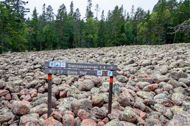 Längs Höga kusten-leden finns bland annat enorma klapperstensfält, som är lämningar sedan istiden.