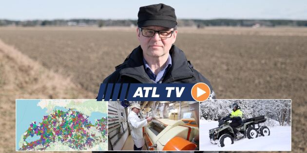 ATL TV: Kvarnen importerar egna vetesorter