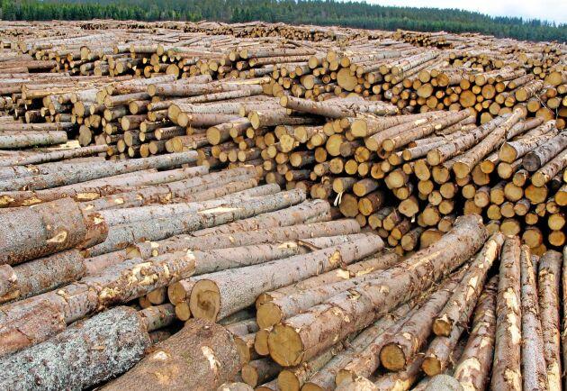 Virkespriserna steg under andra kvartalet, enligt Skogsstyrelsens kvartalsstatistik.