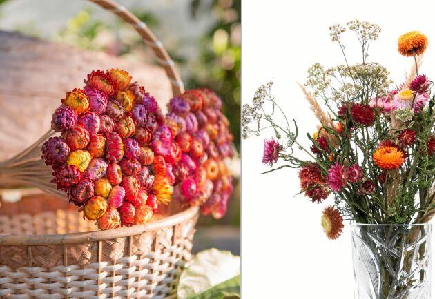 Torka blommor på fyra olika sätt.