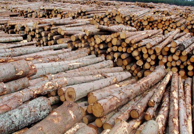 När den globala handeln med många produkter gick ned mellan februari och mars ökade den i stället för många skogsvaror.