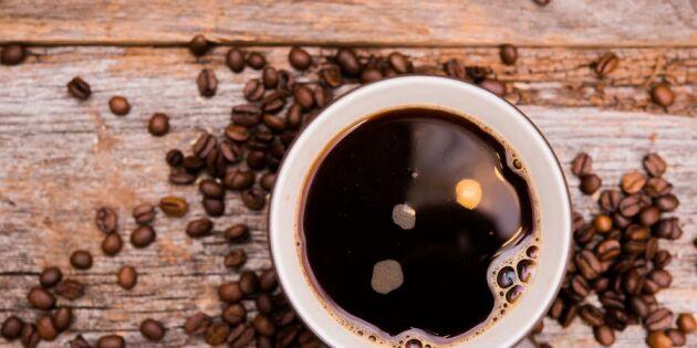 Het trend med kokkaffe: Så här gör du världens godaste kaffe!