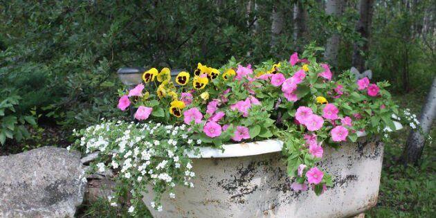 Fixa blommande skumbad