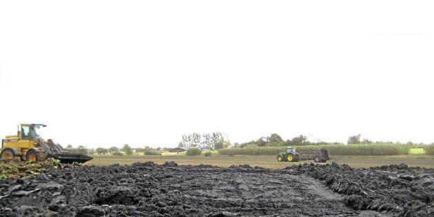 Avloppsslam: Återvinning av fosfor kan bli lag