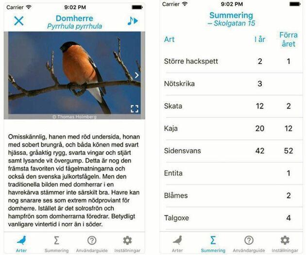 """I appen """"Vinterfåglar inpå knuten"""" kan du både få information om de vanligaste arterna och räkna dina egna vinterfåglar."""