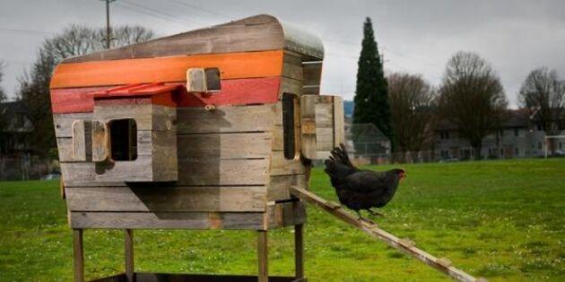 10 härliga hönshus (vissa gör vad som helst för sina höns)