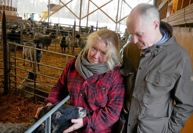 På Ändebols gård finns får, kor, grisar, höns och grönsaksodling. Det mesta som produceras säljs i gårdsbutiken.