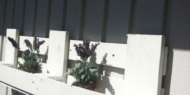 Bygg din egen odlingshylla av pallrester
