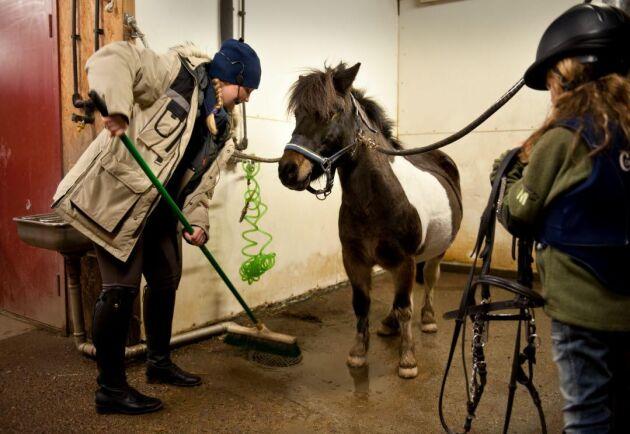 Arbetet inom hästnäringen sker fortfarande till stor del på samma sätt som för 100 år sedan.
