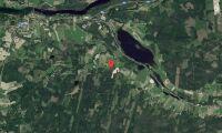 Skogsfastigheter i Gävleborg såld