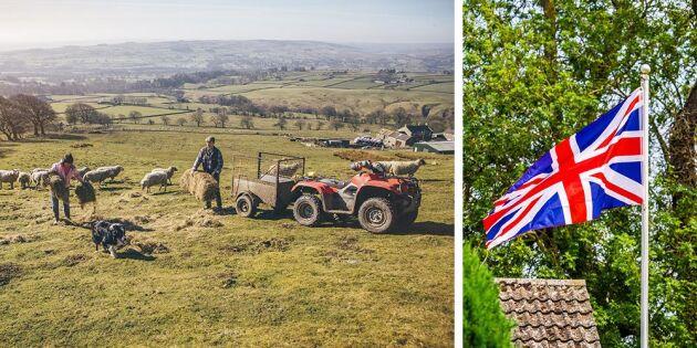 Rekord för brittiska lantbruket