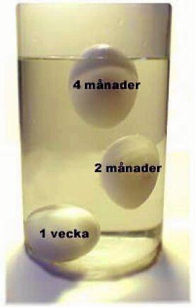 Genom att kolla hur ägget beter sig i ett vattenglas kan du avgöra hur gammalt det är.