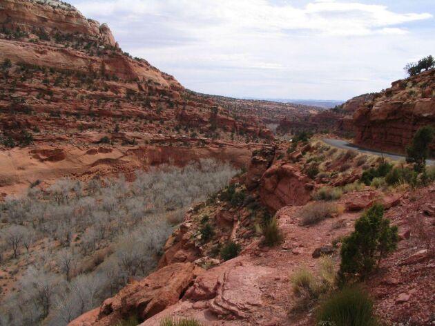 Här i Escalante-dalen i Utah odlade man potatis för 11 000 år sedan. Då var stora delar av Norden fortfarande täckt av kilometertjock is.