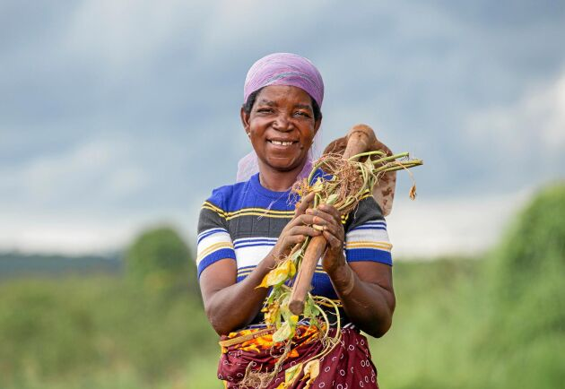 Teressa Mauride är bonde i Mocambique, en av dem som drabbas hårdast av pandemins effekter.