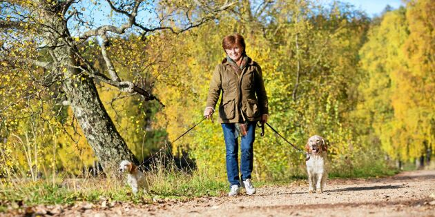 Ny svensk forskning: Promenader kan minska risken för allvarlig stroke