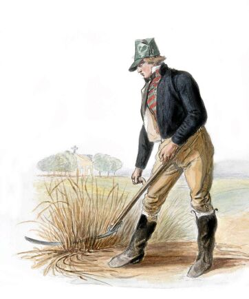 En svensk bonde på 1800-talet använder lie i sina otroligt snygga vardagskläder.