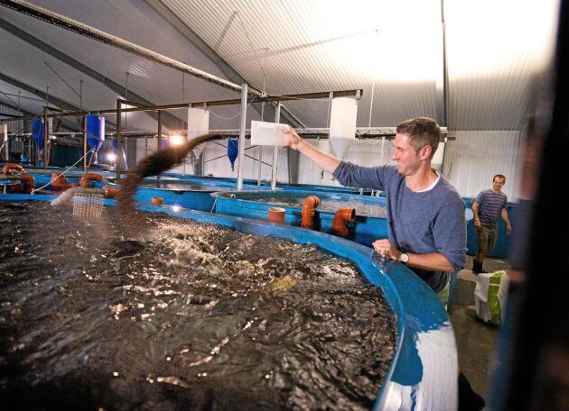 Johan Ljunqquist, VD för företaget Gårdsfisk, som i samarbete med Svenskt Sigill ska ta fram en certifiering för landbaserad fiskuppfödning.