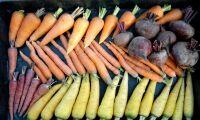 Fortsatt låga halter bekämpningsmedel i mat