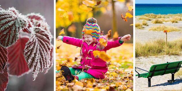Tre olika årstider i Sverige – på samma gång