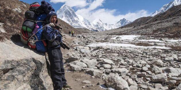 Helt otroligt! Sherpas från Himalaya bygger trappa mot Kebnekajses topp