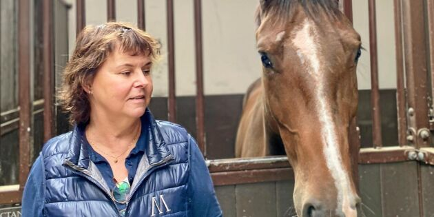 """""""Ta """"riktiga hästtjejer"""" på allvar – yrkesskickliga kvinnor som bidrar till samhällsekonomin"""""""