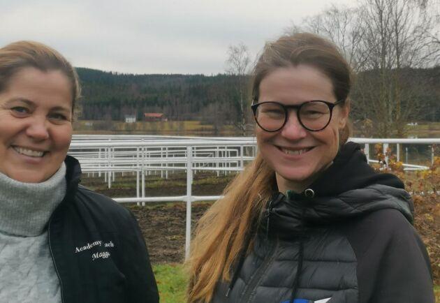 Margareta och Maria Bäckström driver stall Killigrew. De har flera ben att stå på inom företaget, och det senaste är att leasa ut tävlingsponnyer.