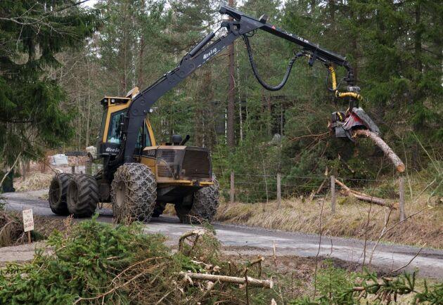 Skogsbruket har det svårt att rekrytera folk men menar att de som vill jobba med skogen ofta söker sig dit.